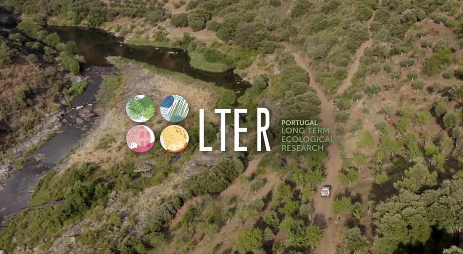 Lançamento das curtas-metragens LTER