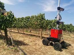 Vinbot - Um robô que estima a quantidade de uva na vinha