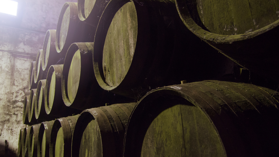 O Futuro no Passado: vinhos da antiguidade clássica provados hoje