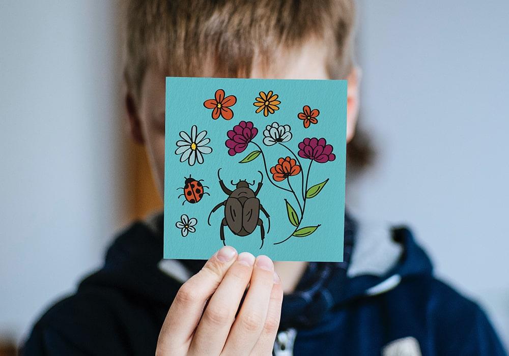 Naöms édition jeunesse illustrations insectes fleurs