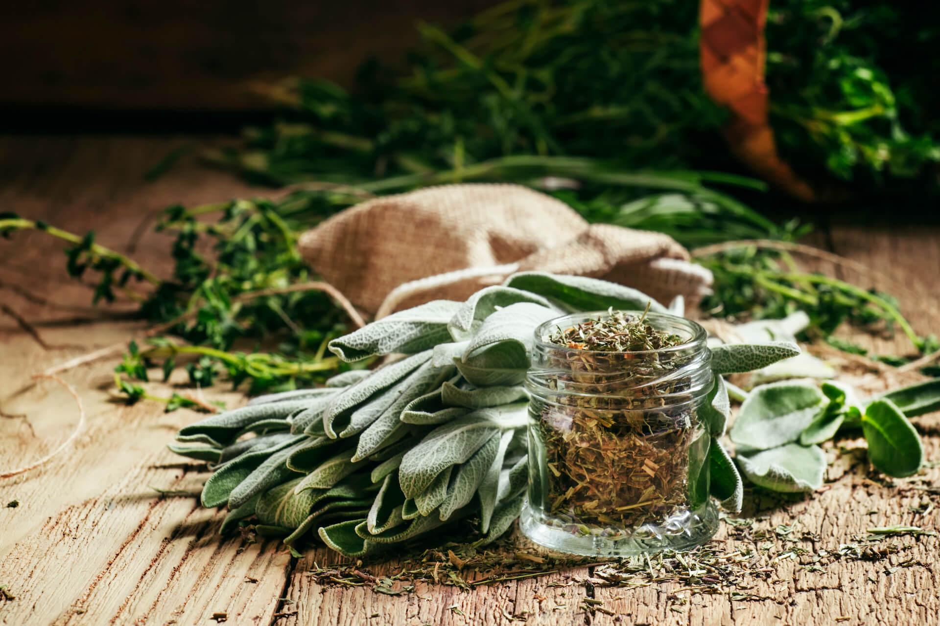 Fitosalus centar - fitoterapija - prirodno liječenje - biljke
