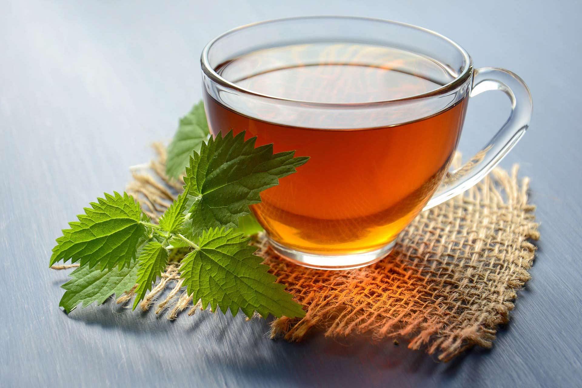 Čaj od koprive u staklenoj šalici pored koje stoji svježa kopriva