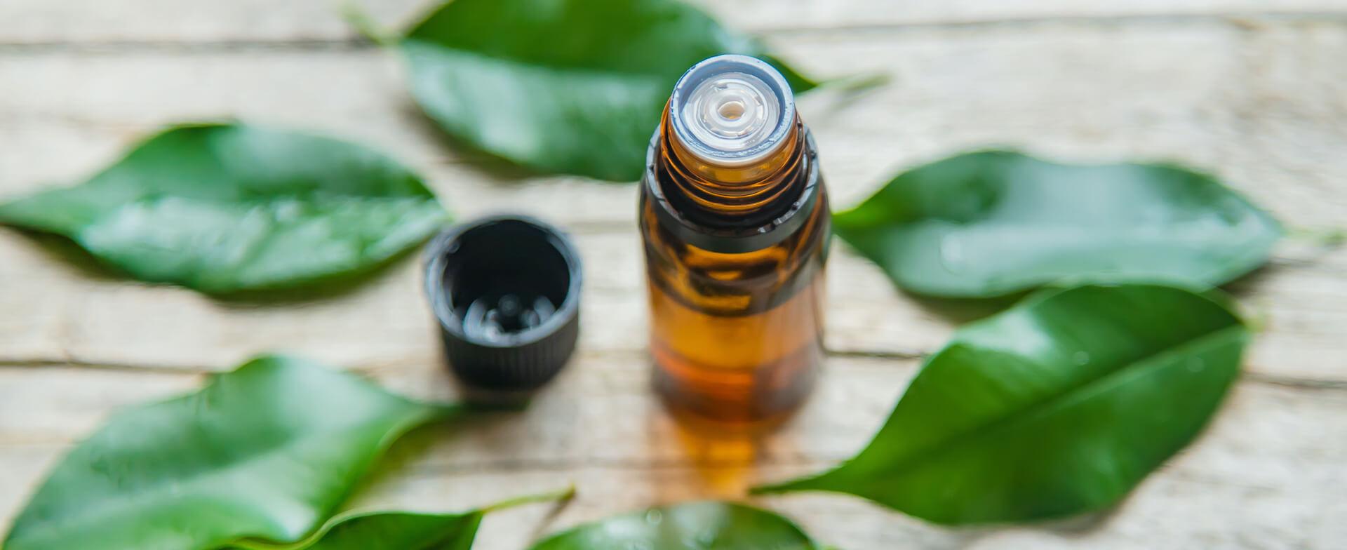 Otvorena bočica eteričnog ulja čajevca okružena svježim listovima čajevca