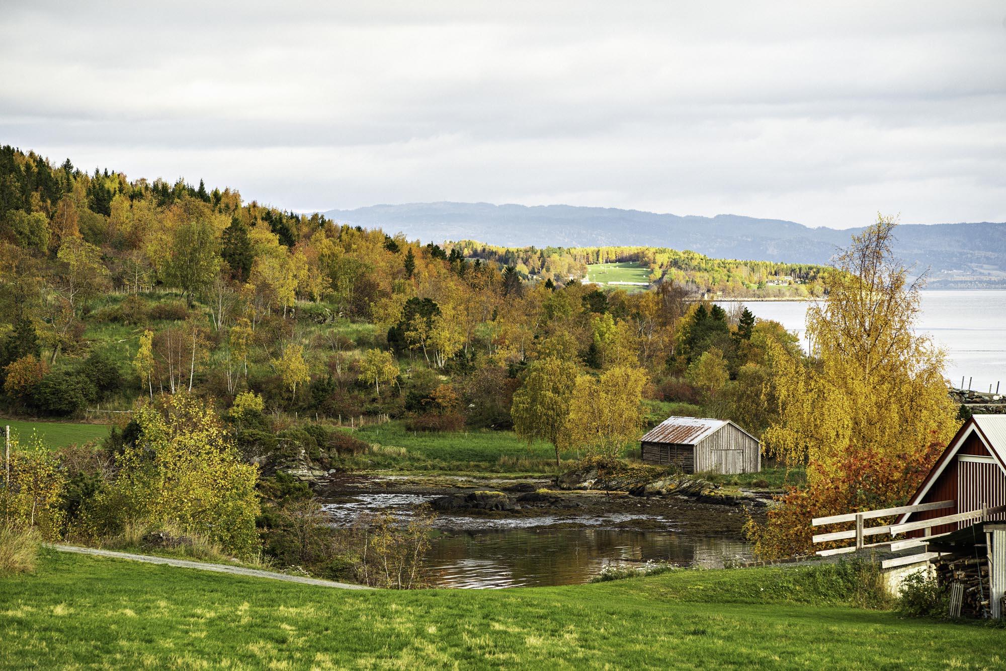 Landskapsbilde av Ytterøy.