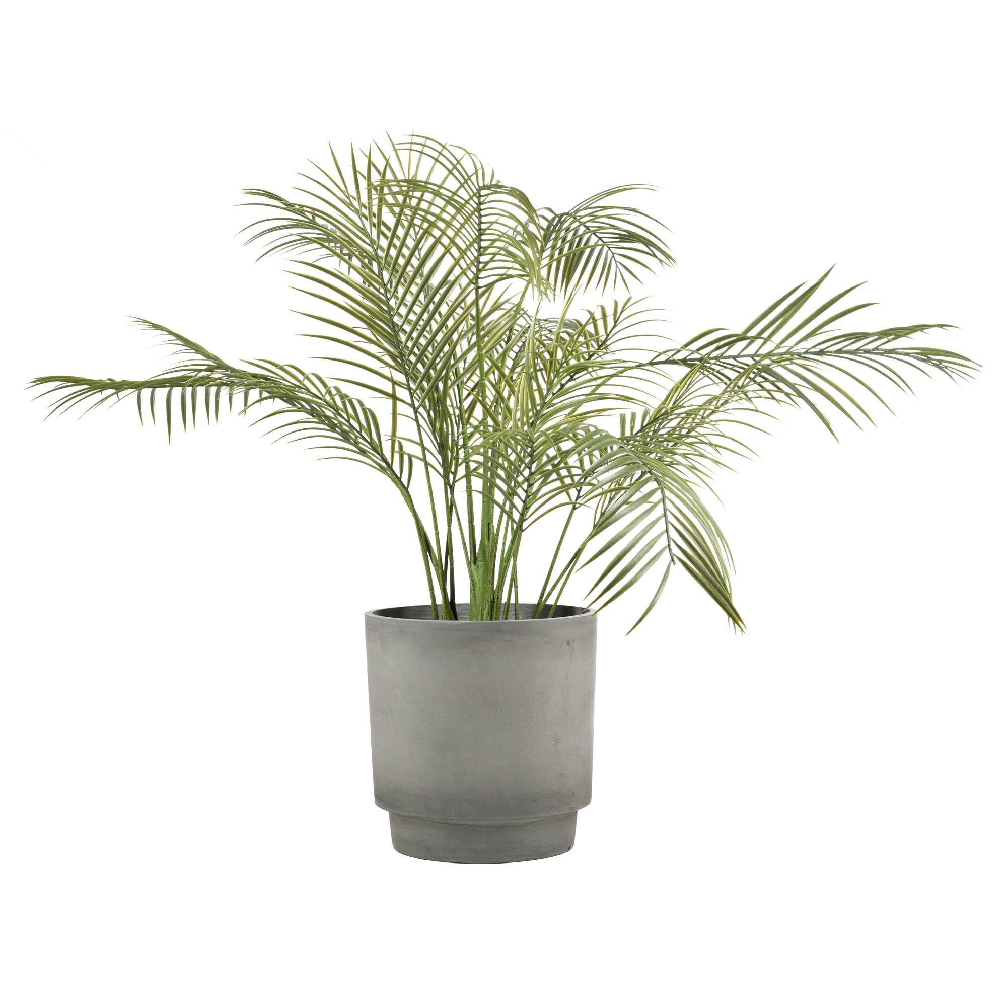 Produktfoto av betongpotte med plante i.