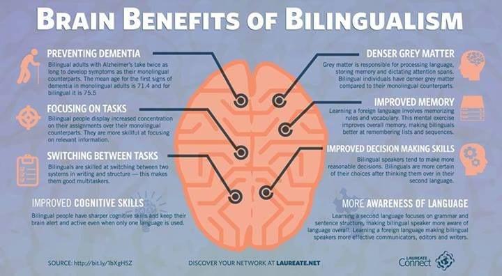 Infographic via Asimo Linguistics