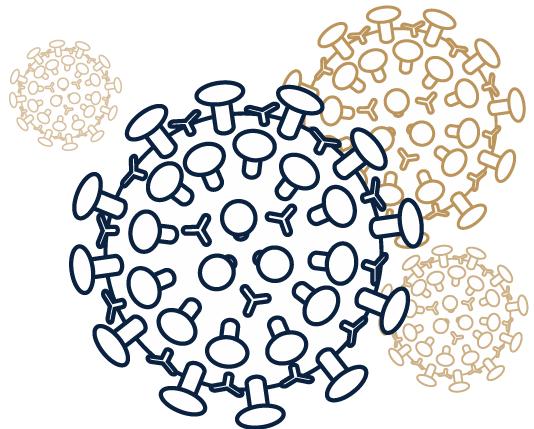 Illustration of the coronavirus
