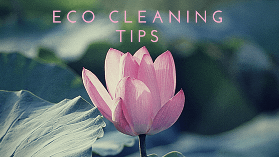 Tips For Eco-Friendly House Cleaning