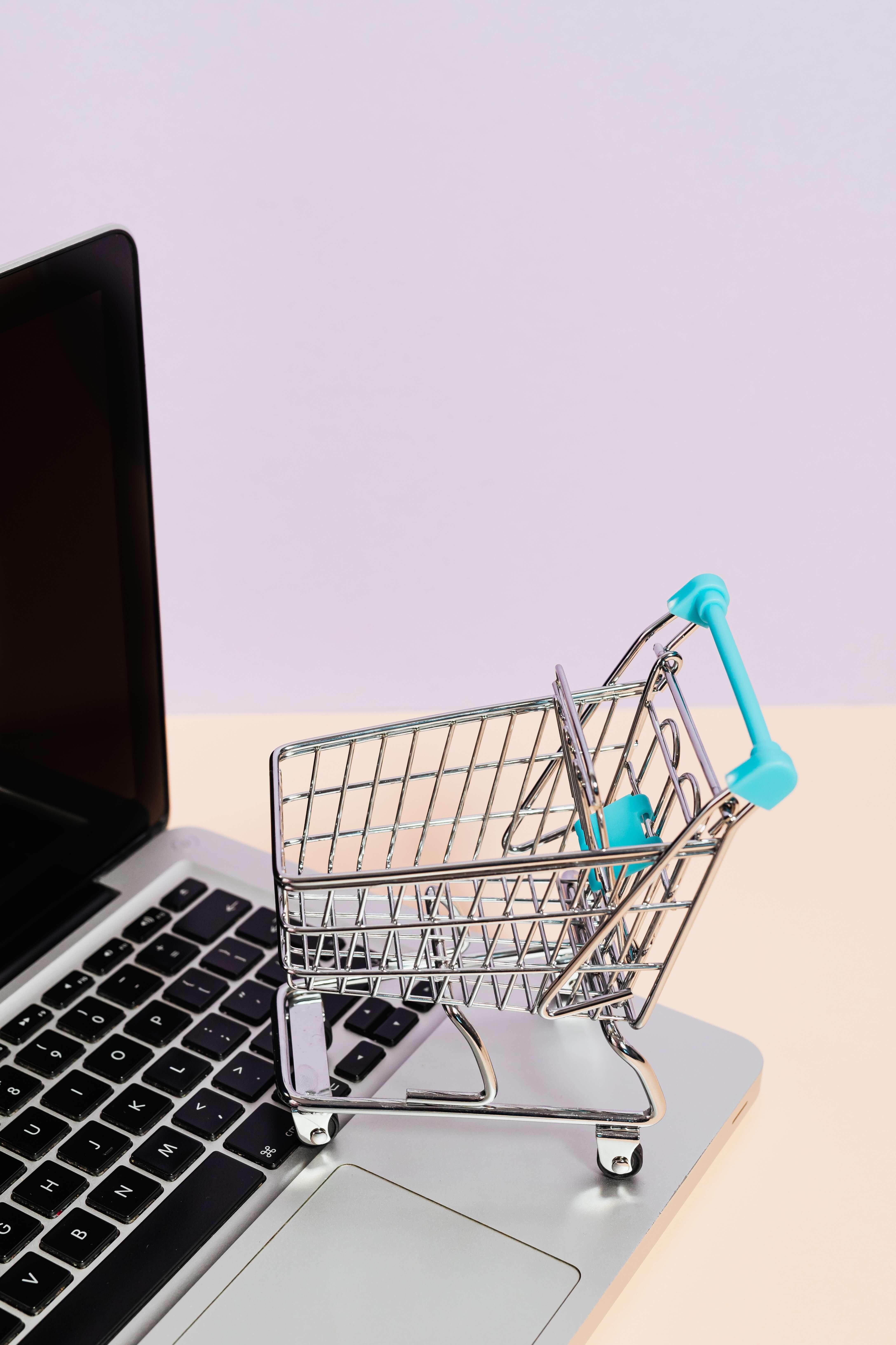 Onlineshop Kosten 2