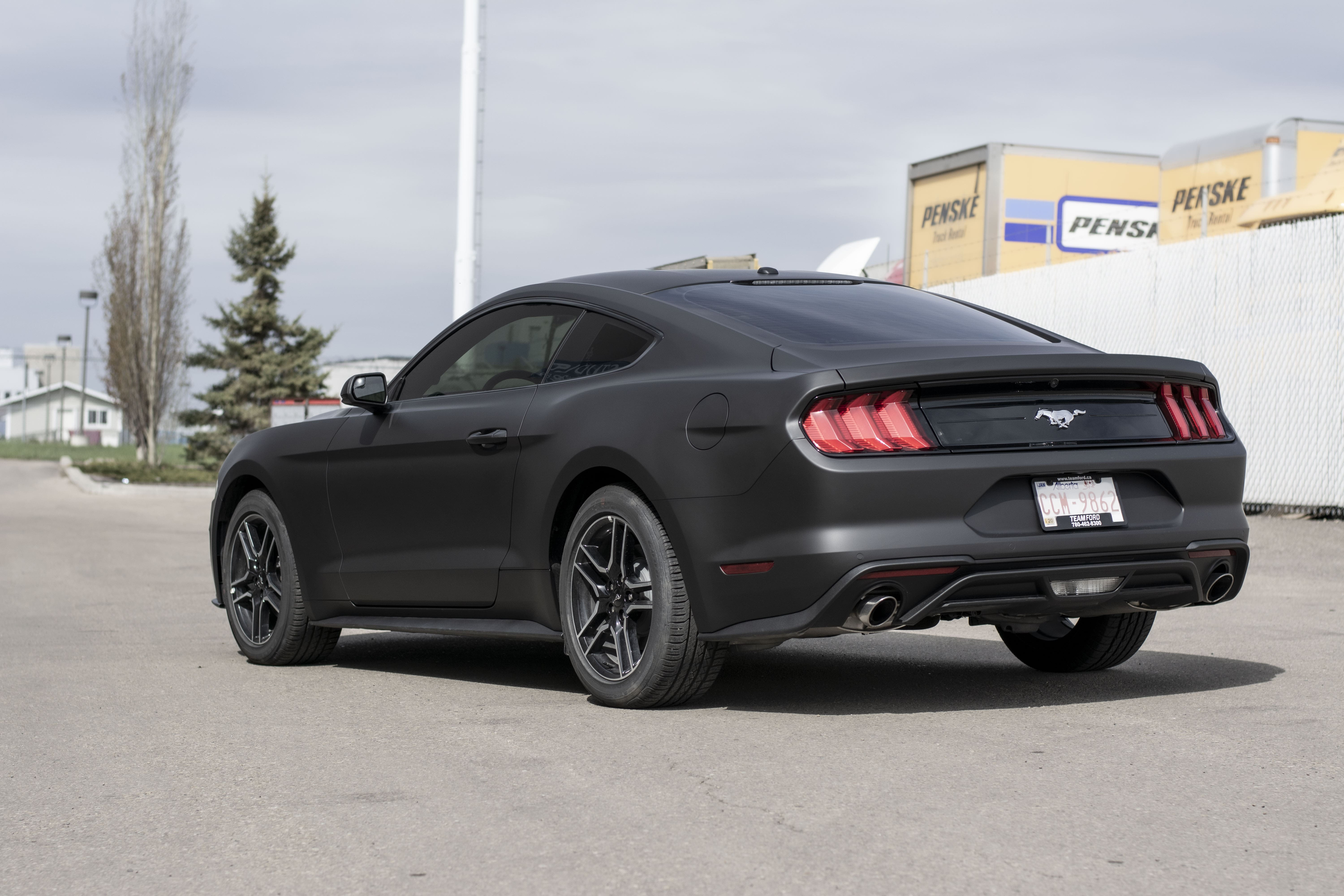 Ford Mustang wrapped in Avery Matte Black from behind.