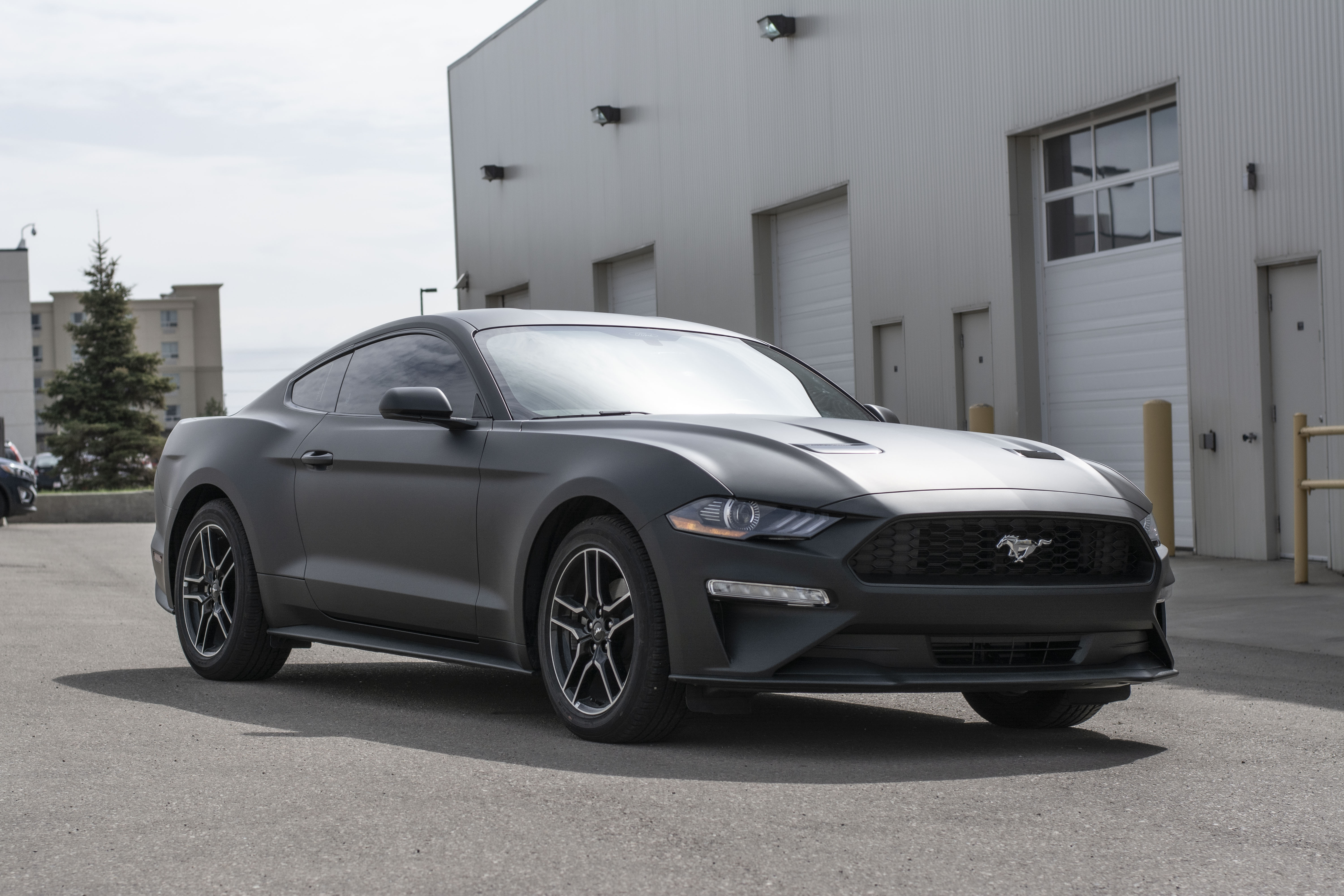 Ford Mustang wrapped in Avery Matte Black
