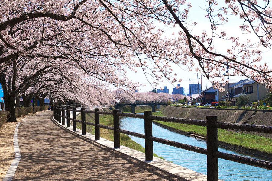 Fukurogawa River