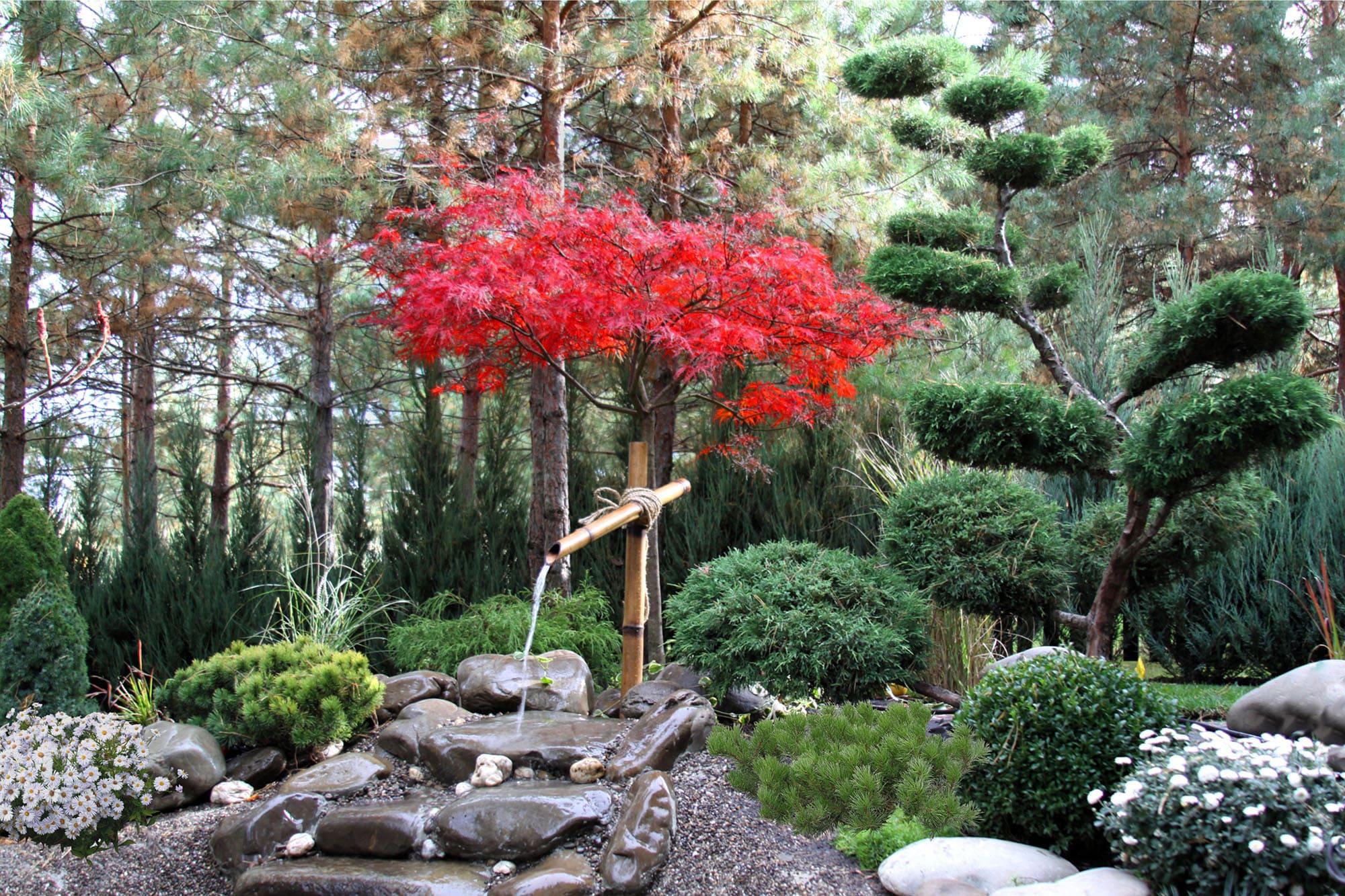 Японский фонтан из бамбука. Фото компании ландшафтного дизайна Магия сада