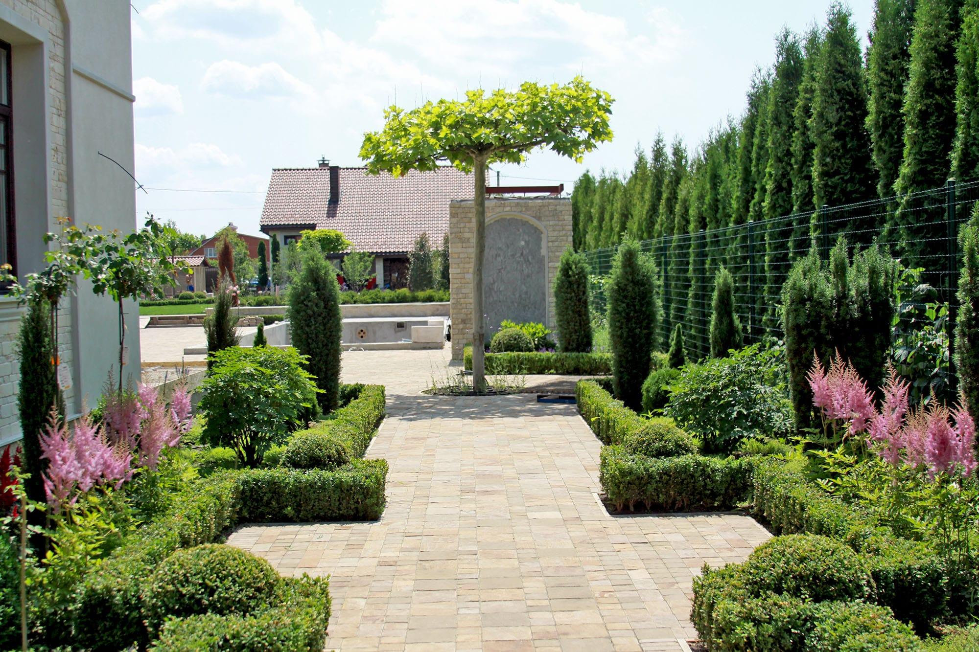Зеленая изгородь из растений. Фото компании ландшафтного дизайна Магия сада