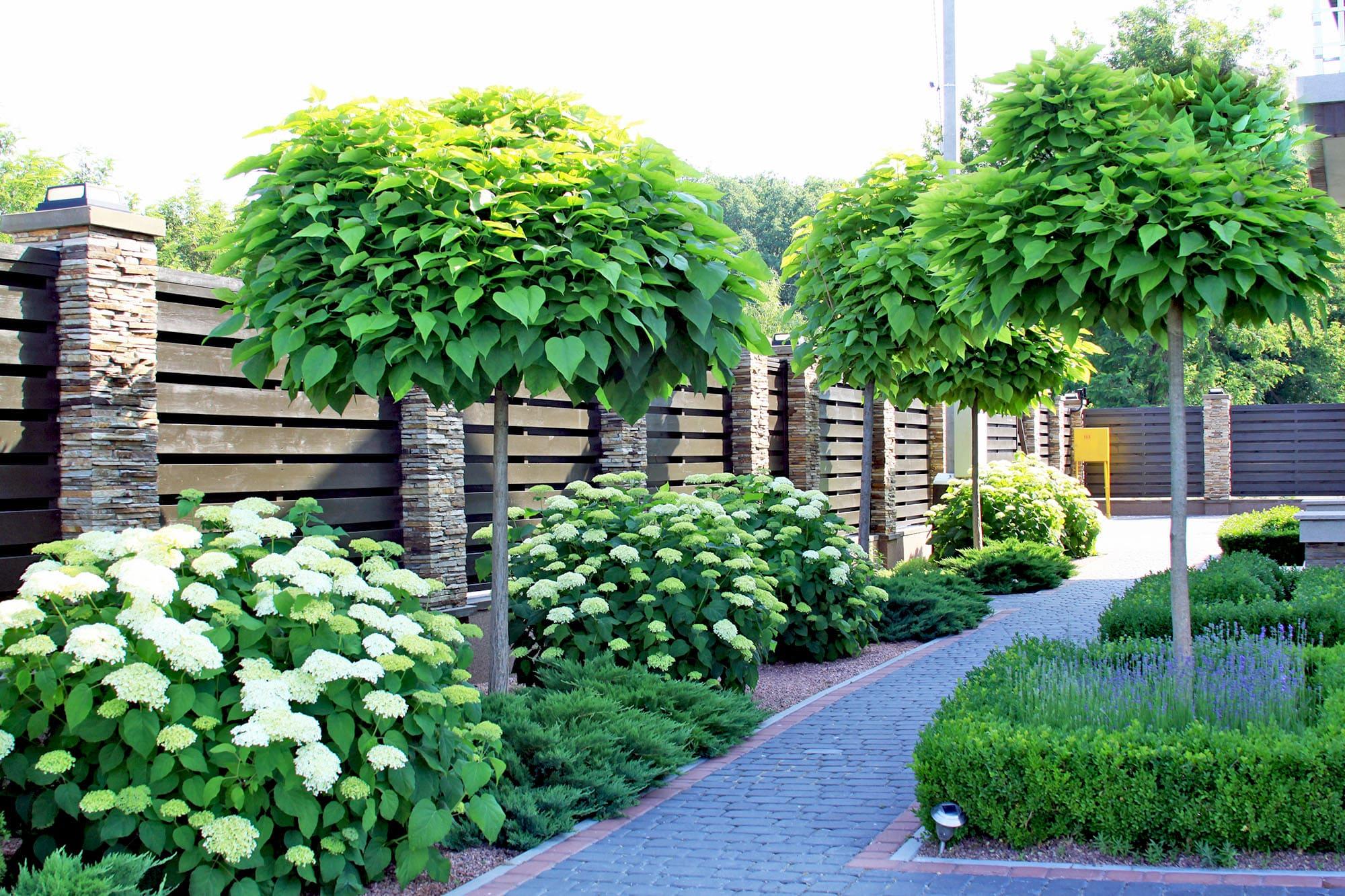 Ландшафтный садовый дизайн небольшого участка. Фото Магии сада