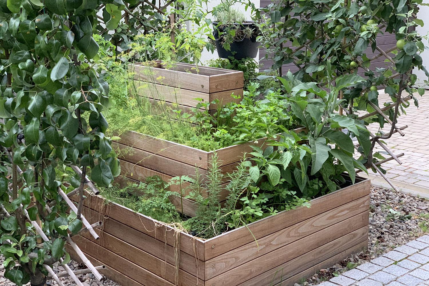 Декоративный огород из ящиков