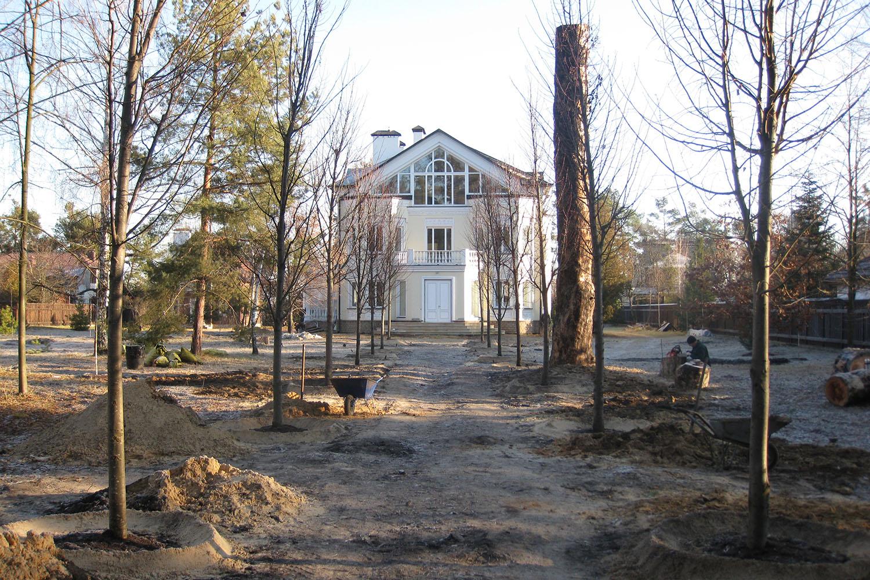 Посадка крупномеров в Киевской области