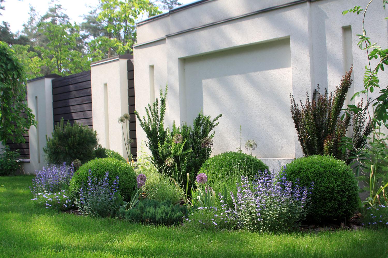 Садовая композиция, цветник из многолетних в Киеве