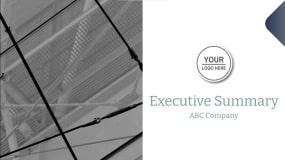 Executive Summary Example Presentation Template