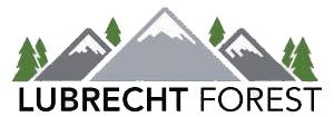 Lubrecht Forest