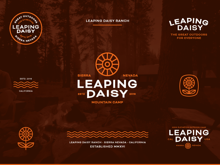 Collage of the Leaping Daisy Branding in the Primary Color Palette