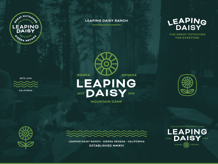 Collage of the Leaping Daisy Branding in the Secondary Color Palette