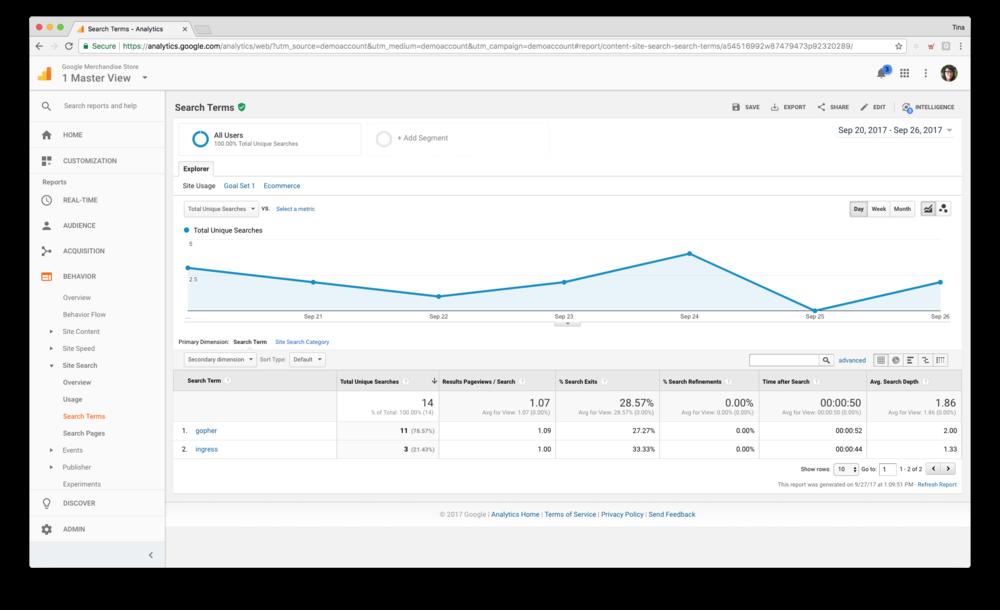 Google Analytics search report