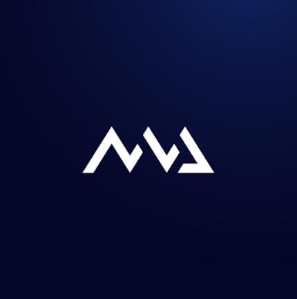 Webflow Web Design Website for Venture Capitalism Firm