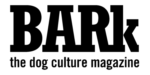 Dog trainer published in Bark Magazine