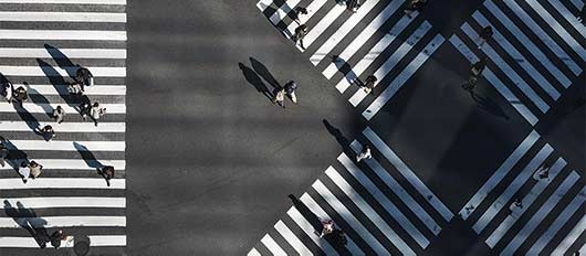 Ariel view of people walking
