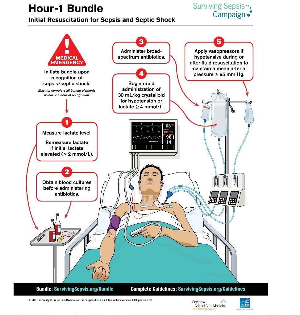 Sepsis (Initial resuscitation)