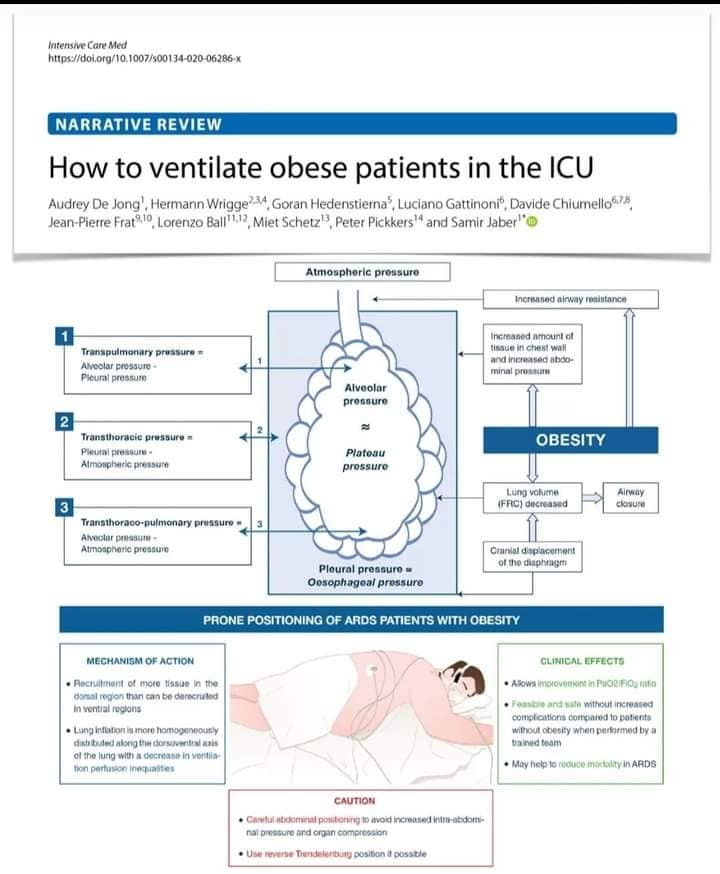How to ventilate obese patients