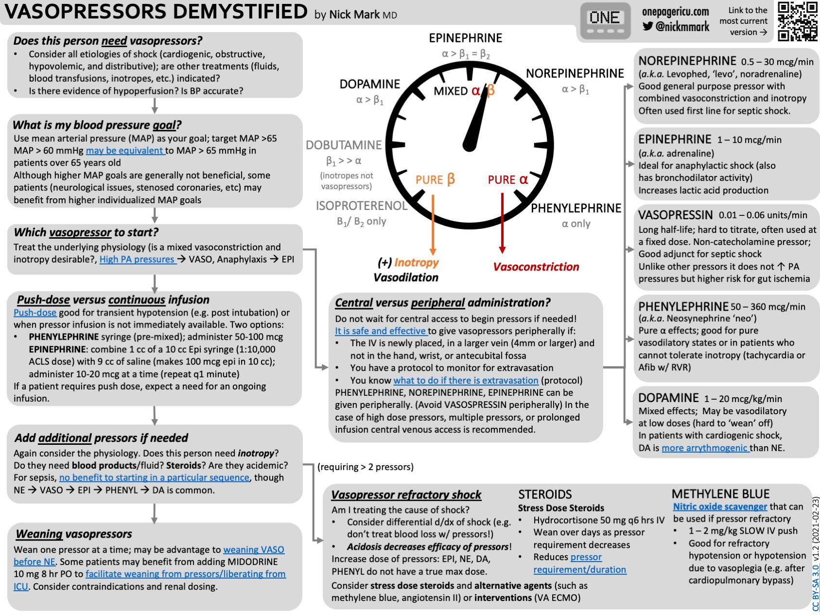 Vasopressors overview