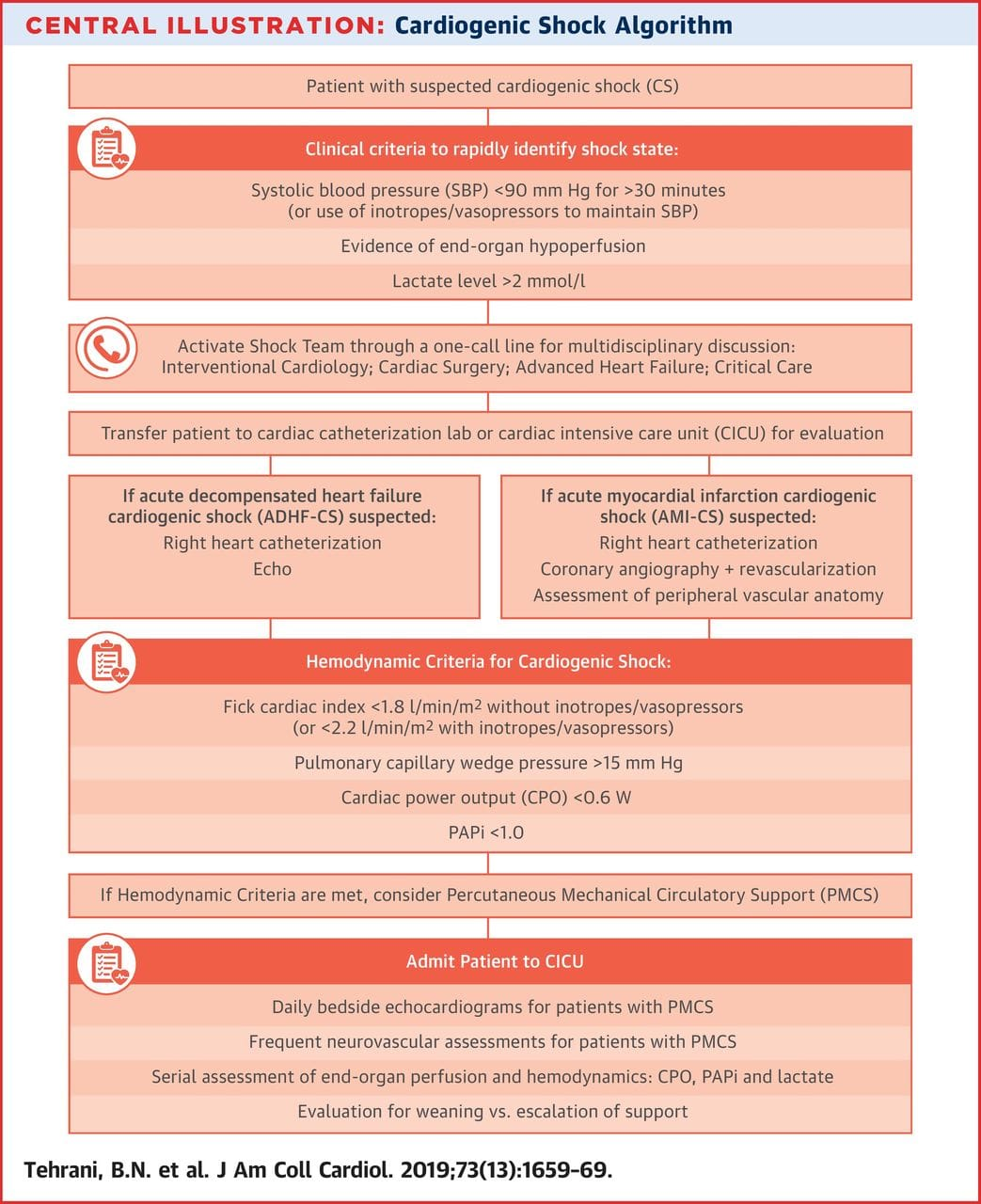 Cardiogenic shock algorhytm