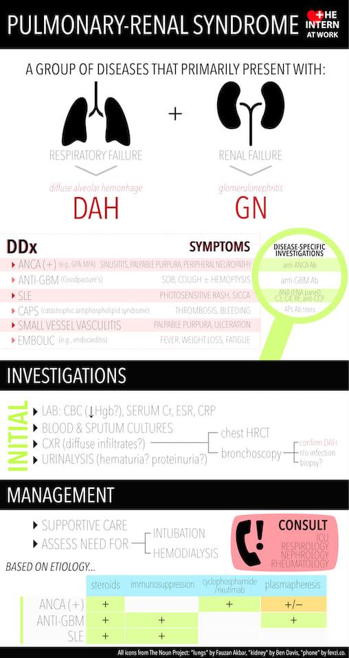Pulmonary renal syndrome
