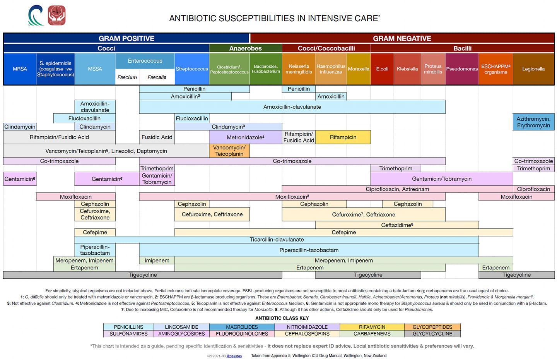 Antibiotics in intensive care