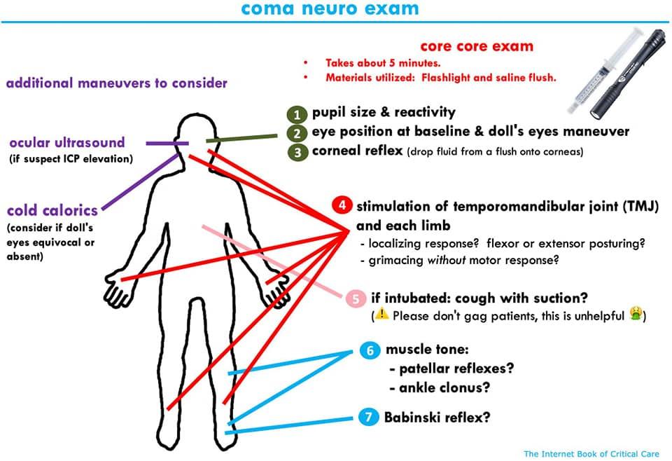 Neurological exam in comatous patient