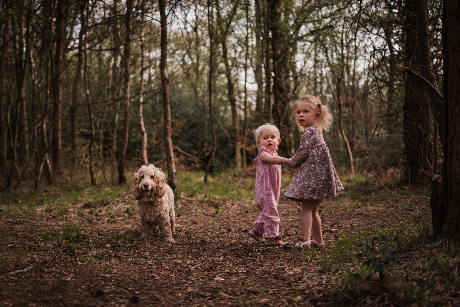 Natural documentary family photography by The Ginger Collective, girls and dog in the woods