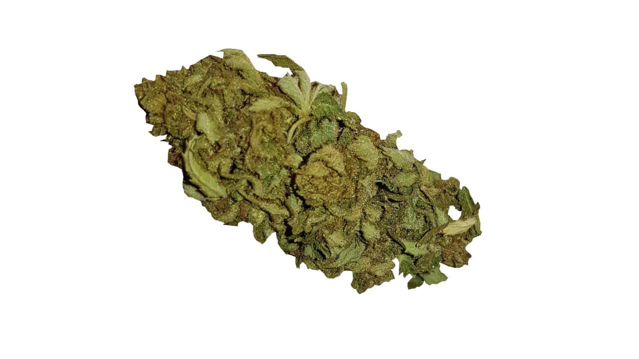 Unsere Cannabis Blüten sind sehr günstig.