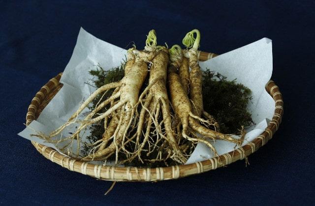 🌷 Wie ist die Wirkung von Ginseng? - Green Rabbit