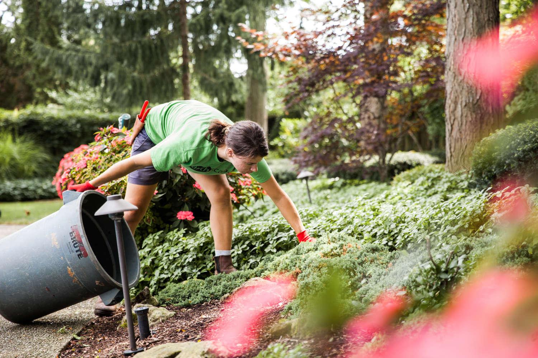 A landscaper removing debris from a garden.