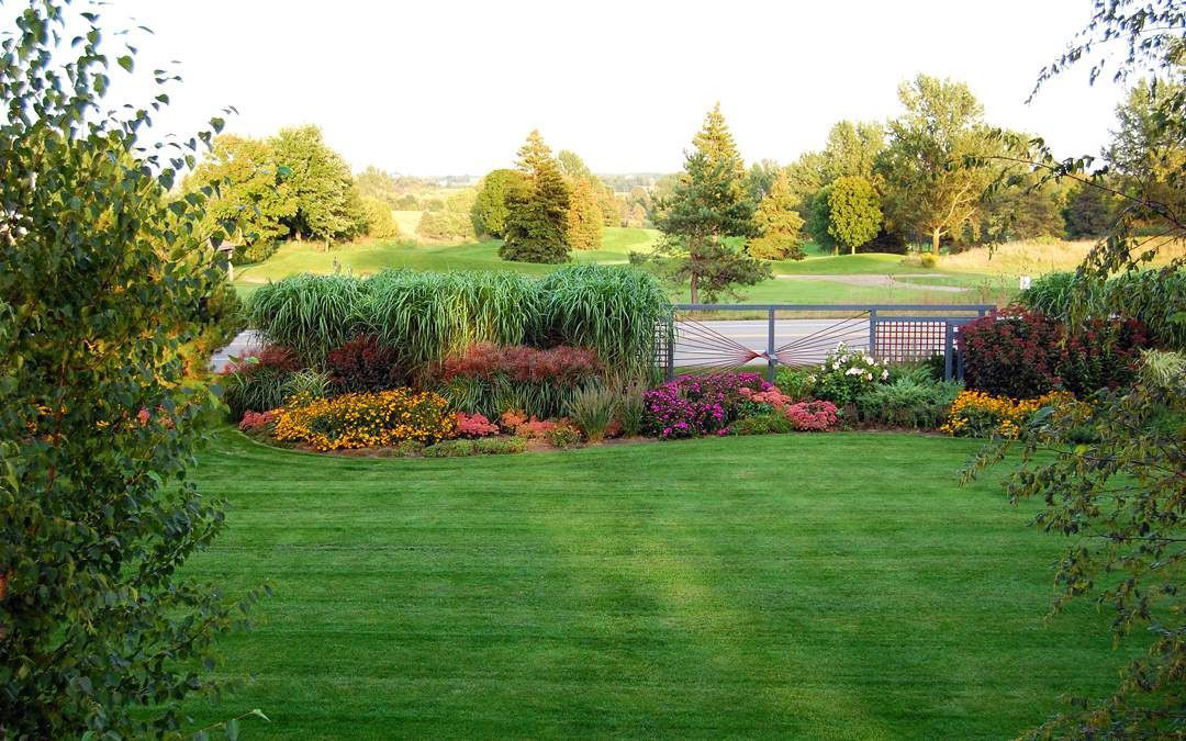 A large backyard with a garden outlining it.