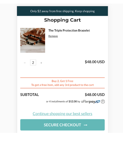 Introduce offers like free shipping/ buy 1 get 1 free