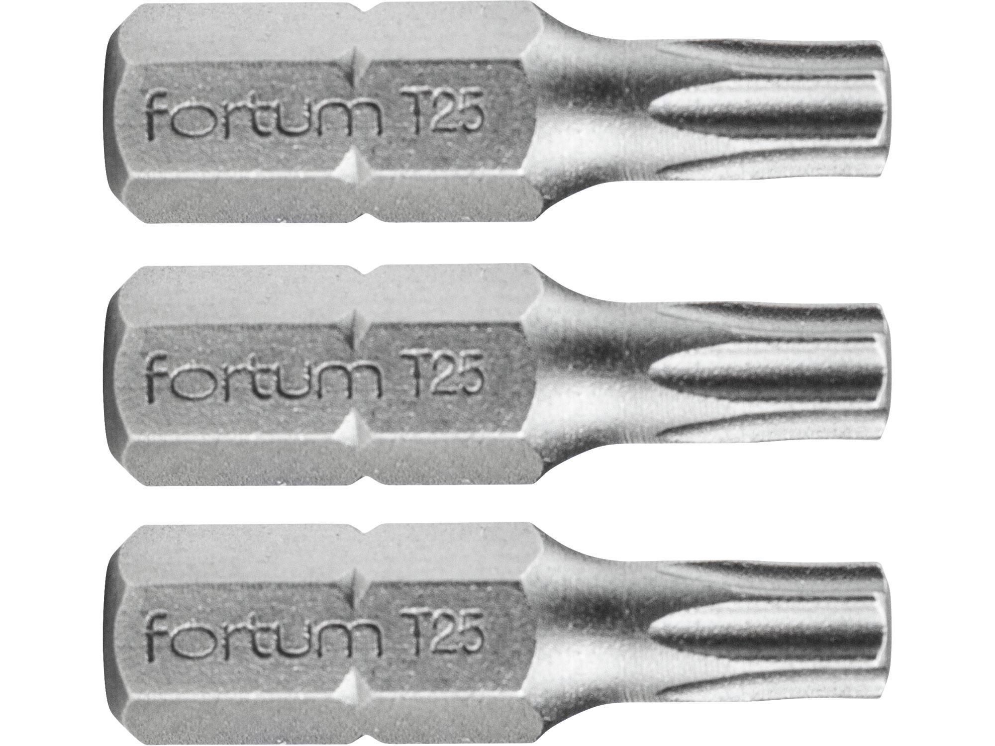 hrot TORX, sada 3ks, T 25x25mm, S2