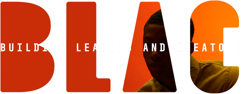 BLAC: Building Leaders And Creators. An independent Agency Internship Community