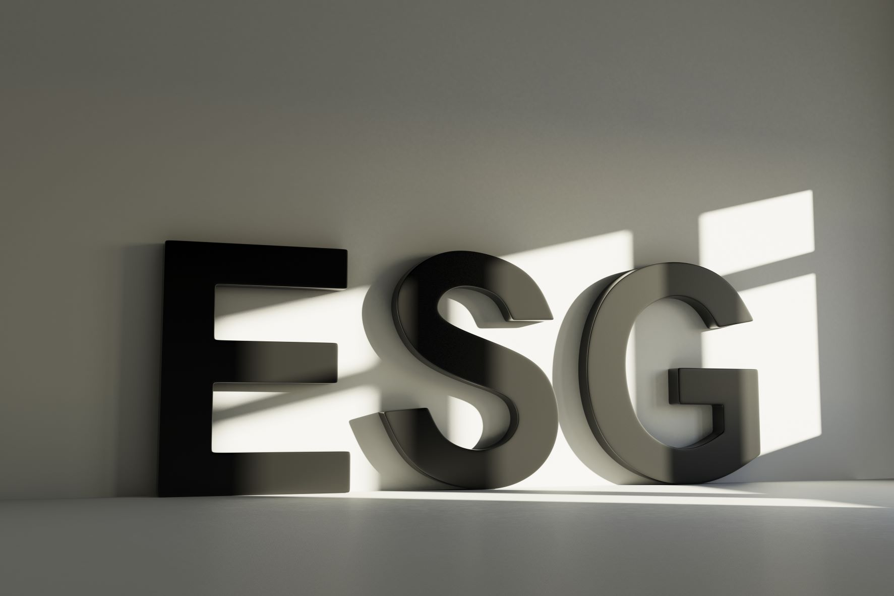 """""""ESG"""" in large block letters leaning against a wall with light from a window hitting them"""