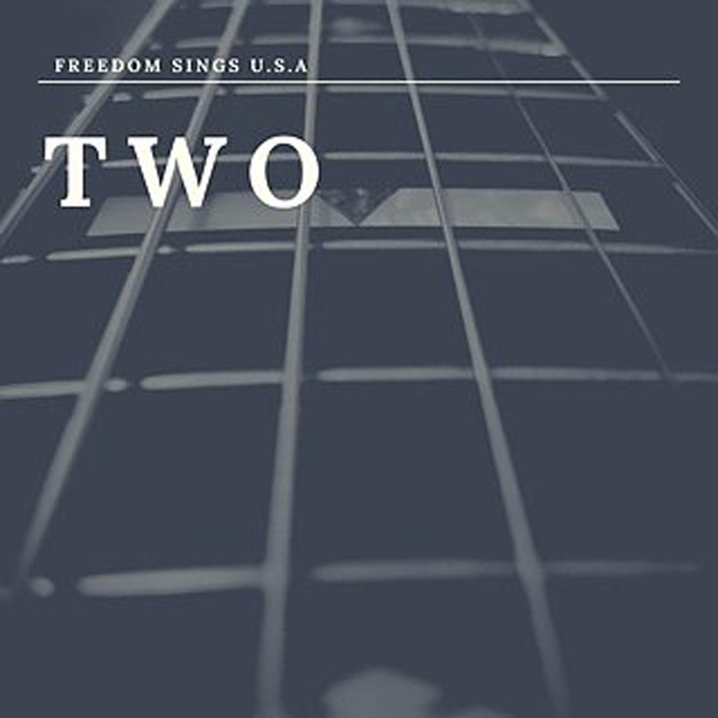 Freedom Sings USA Volume II