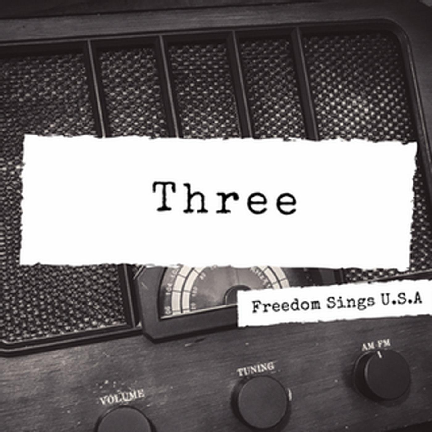 Freedom Sings USA Volume III