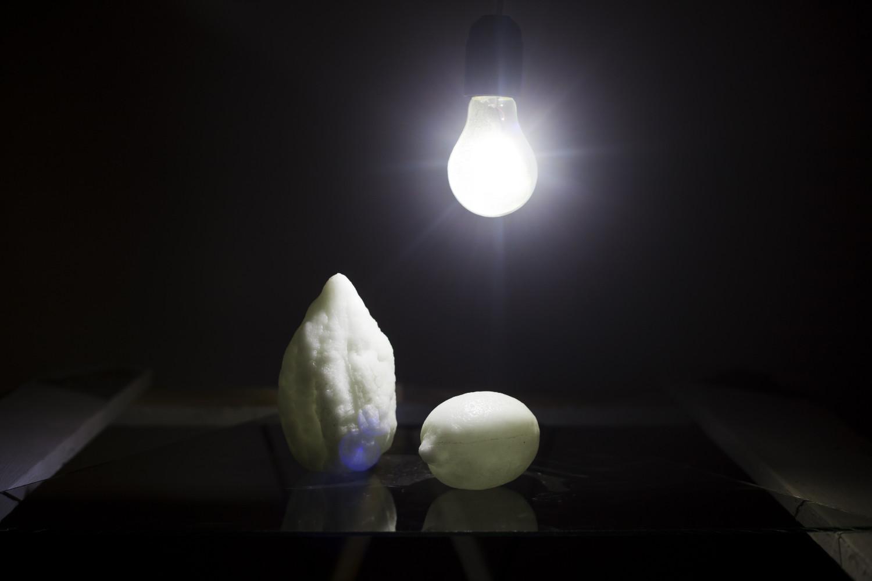 Fruit / Light