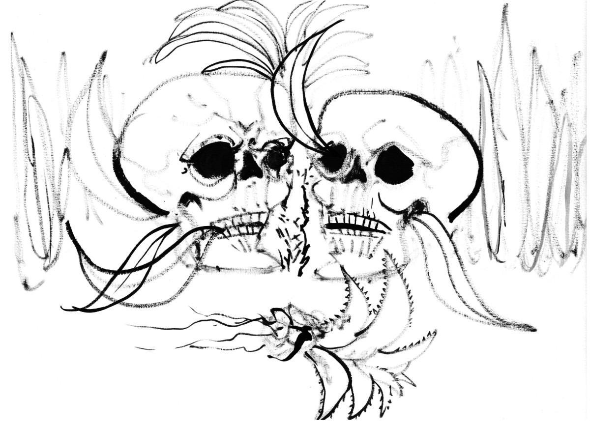 2 Skulls & Agave
